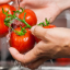 Tips to eat healthy without breaking the bank